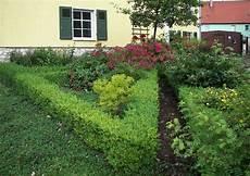 wann buchsbaum schneiden buxus sempervierens buchsbaumhecke im bauerngarten