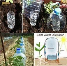 pflanzen bewässern mit plastikflasche bew 228 sserung garten bew 228 sserung g 228 rten und pflanzen