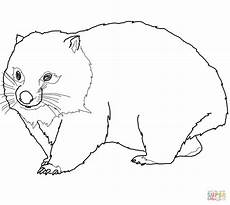 Malvorlagen Zum Ausdrucken Wombat Wombat Coloring Page Free Printable Coloring Pages