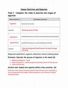 gcse biology human nutrition and digestion worksheet with answers by megan2553 teaching
