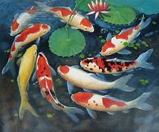 Gambar Lukisan Ikan Koi Yang Cantik Dan Indah Infoikan
