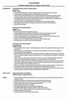 intern human resources resume sles velvet
