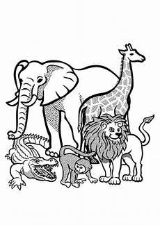 Malvorlage Viele Tiere Malvorlage Viele Tiere Kostenlose Malvorlagen Ideen