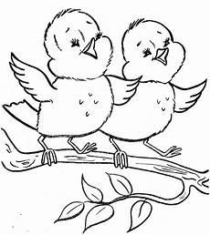 malvorlagen kinder vogel