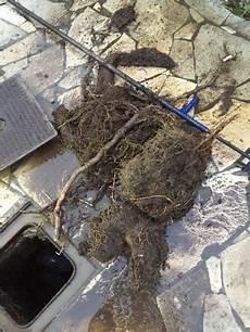 canalisation bouchée fosse septique canalisation bouch 233 e par des racines rootcut 174 allo