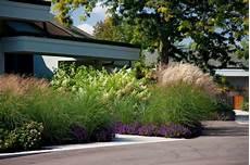 gräser im garten als sichtschutz den vorgarten neu gestalten 252 ppige vegetation als