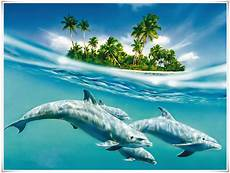 Kumpulan Gambar Kartun Ikan Lumba Lumba Himpun Kartun