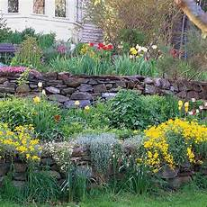 bepflanzung vor einer mauer sloping garden ideas and optimal solutions for landscape