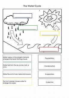 science worksheets for year 2 12096 pin by re al qwasmi on worksheet with images water cycle worksheet water cycle water cycle