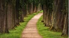neue wege gehen alte pfade verlassen wer neue wege gehen will muss alte pfade verlassen 171 sutor coaching