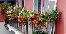 Balcons Et Terrasses Fleuries