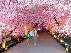 wedding artifcial peach blossom tree plant in factory price for wedding decoration and indoor