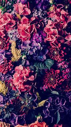 Flower Wallpaper Iphone 7 by 25 Gorgeous Iphone 7 7 Plus Wallpapers Preppy Wallpapers