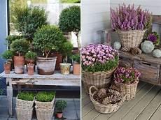 Pflanzen Winterhart Balkon - den balkon winterfest machen wir zeigen wie es geht