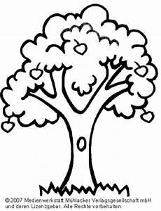 Malvorlage Apfelbaum Jahreszeiten Ausmalbilder Apfelbaum Medienwerkstatt Wissen 169 2006