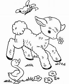 baby animal coloring pages for adults 17290 corner veterinary hospital wexford wexford vets pet vet dogs cats large animals