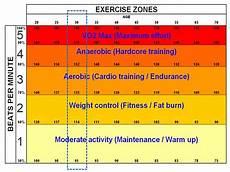 trainieren like a die 5 herzfrequenzzonen und wie du