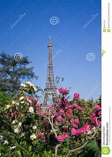 Eiffel Tower And Flowers Stock Photo Image Of April