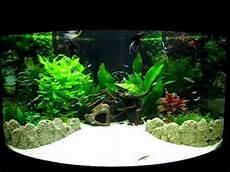 Juwel Trigon 190 Fish Tank Aquarium In Its