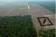 zerstörte natur vorher nachher deutsche bank bringt abholzung an die b 246 rse rettet den