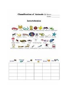 animals classification worksheets 13819 worksheets classification of animals 2