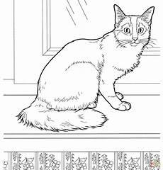 ausmalbilder lustige katzen ausmalbilder katzen malvorlagen kostenlos zum ausdrucken