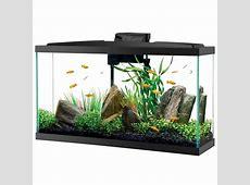 20 gallon tall aquarium dimensions