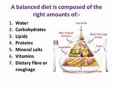 biology form 4 chapter 6 nutrition part 1