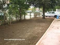 gazon en rouleau drome gazon en rouleaux 224 plaquer en vente chez palmiers prestige