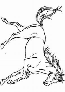 Malvorlagen Kostenlos Pferde Malvorlagen Pferde Springreiten Zum Drucken Bei Ausmalbild