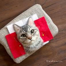 Wakuneco Membuat Gambar Potret 3 Dimensi Kucing Yang