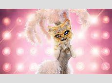 masked singer season 3 kitty clues