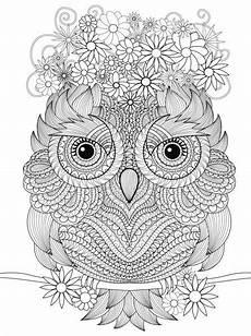 coloring owl malvorlagen mandala