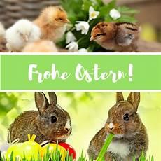 Frohe Ostern Gr 252 223 E Bilder M 228 Nner K 252 Ken Hasen Easter