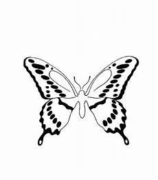 Malvorlagen Insekten Jelent Insekten 00275 Gratis Malvorlage In Insekten Tiere Ausmalen
