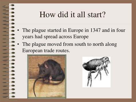 When Did The Black Death Start