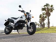2014 honda msx125 picture 559444 motorcycle review