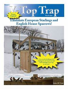 house sparrow trap plans troyer v top trap plans how to catch invasive song birds