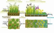Assainissement Individuel Naturel Assainissement Individuel Par Filtres Plant 233 S