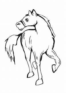 Pferde Ausmalbilder Klein Ausmalbilder Kleines Fohlen Pferde Malvorlagen