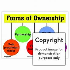 forms of ownership depicta