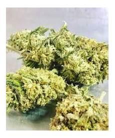 acid rock cbd acid rock hemp strain hemp flower wholesale cbd flower orlando wholesale hemp flower
