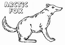 Arctic Fox Coloring Sheet Arctic Fox Coloring Pages Coloring Pages To And