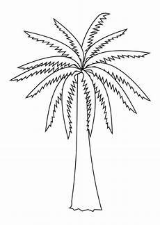 palma llanera para dibujar dibujo para colorear palmera dibujos para imprimir gratis