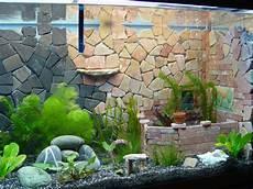 Aquarium Innengestaltung Bauanleitung Zum Selberbauen