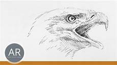 Tierskizzen Tiere Schnell Zeichnen Lernen Zeichenkurs