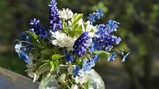 10 plantes pour r 233 aliser de magnifiques bouquets