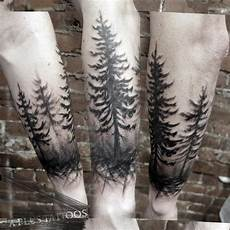 Wald Wald Ideen Und Baum