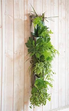 cadre mural vegetal do it yourself cadre v 233 g 233 tal цветы комната мечты