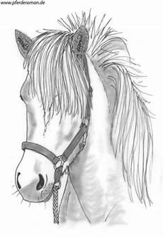 Ausmalbilder Pferde Hannoveraner Pferdebilder Zum Ausmalen